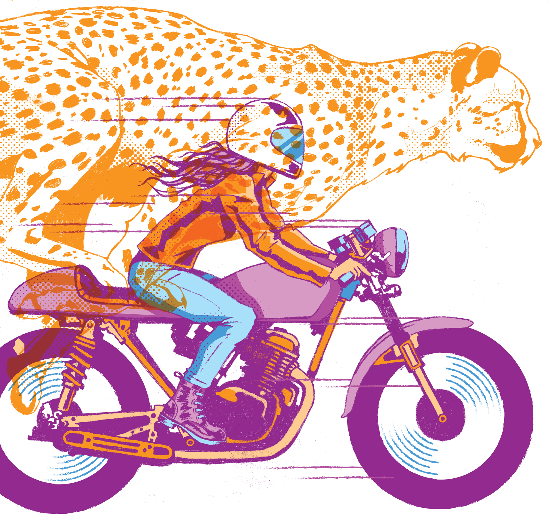 cheetah and motorcycle drawing